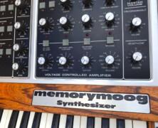 Memorymoog LAMM